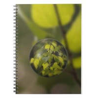 Sunny Leaves Notebook