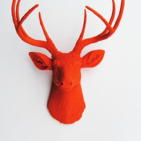 White Faux Taxidermy - Faux Deer Mount - The Anastasia - Orange Resin Deer Head- Stag Resin Orange Faux Taxidermy- Chic & Trendy