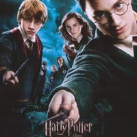 Harry Potter and the Order of the Phoenix (French) 11x17 Movie Poster (2007)