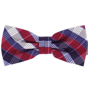 Tok Tok Designs Formal Dog Bow Tie for Large Dogs (B502)