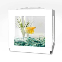 BioBubble Deco Cube Habitat | Overstock.com Shopping - The Best Deals on Fish Tanks