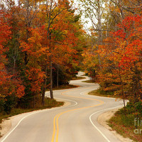 Curvy Fall Photograph by Adam Romanowicz - Curvy Fall Fine Art Prints and Posters for Sale