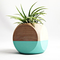 Cube Planter - Teal