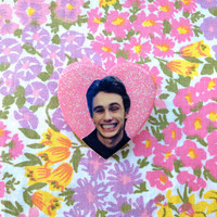 Daniel Desario Brooch - James Franco in Freaks and Geeks