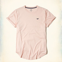 Guys Must-Have Curved Hem T-Shirt   Guys New Arrivals   HollisterCo.com