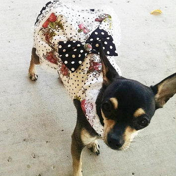 Dog or Cat Harness Dress and Vest Combo Rockabilly 1950s style Motorcycle Vest :Matching Dress