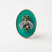 Glasbury Knob by Anthropologie Turquoise One Size Knobs