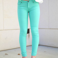 Scarlet BLVD Color Skinny Pants - mint