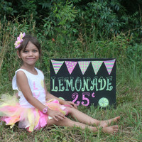 photography prop Seasonal Chalkboard 4th of july, lemonade, halloween, graduation etc.