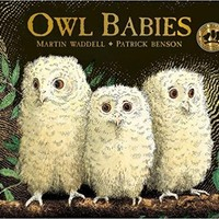 Owl Babies Board book – August 1, 2017