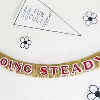 Going Steady Fringe Banner - Playground Love Collection - photo prop, party decor, room decor