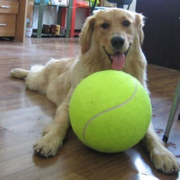 24CM Giant Tennis Ball For Pet Chew