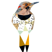"Northern flicker - art print 6""x4"" , 8""x10"" or 11""x14"" - Geometric - Bird art -  yellow, black, red"