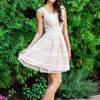 Alice Pink Sequin Fit and Flare Dress