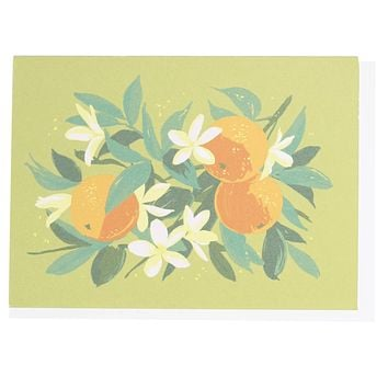 Oranges Boxed Note Cards