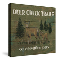 Lodge Signs X (Deer Creek Trails) Canvas Wall Art
