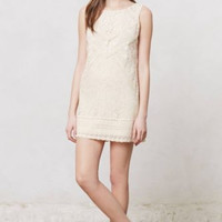 NWT ANTHROPOLOGIE by CHAMPAGNE & STRAWBERRY CREAM BLANCHED LACE SHIFT DRESS 10