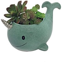 Narwhal Planter
