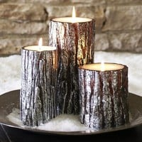 metallic bark pillar candles | Pottery Barn