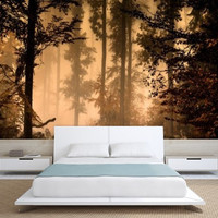 AUTUMN FOREST MURAL, Wallapeper nature, nauture mueal, forest mural, water mural, self-adhesive vinly