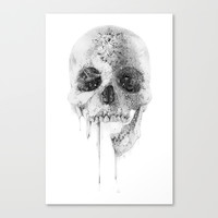 Crystal Skull Canvas Print by Alexis Marcou