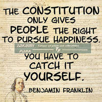 Benjamin Franklin Quote, Constitution, Wall Art, Inspirational Modern Art, Motivational Print, 8x10, 11x14, 16x20 Print, Famous Sayings