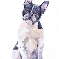 Boston terrier art print, painting watercolor, dog art, dog wall decor,  pet portrait, dog portrait, animal  art print, Art Illustration