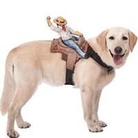 Ride On Cowboy Dog Costume-Party City
