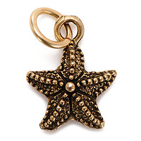 Starfish Charm Silver or Gold