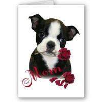 Boston Terrier  Mom Card from Zazzle.com