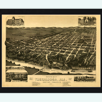 Panoramic View of Tuscaloosa Alabama 1887