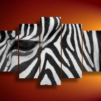 100% Hand-painted Best-selling Quality Goods Free Shipping Wood Framed on the Back African Zebra Beautiful Animals High Q. Wall Decor Landscape Oil Painting on Canvas 5pcs/set Mixorde:Amazon:Home & Kitchen