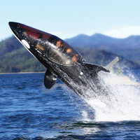 The Killer Whale Submarine - Hammacher Schlemmer