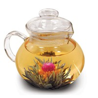 Glass Stovetop Tea Pot Water Boiler Kettle with Infuser