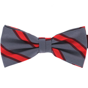 Tok Tok Designs Formal Dog Bow Tie for Large Dogs (B484)