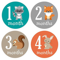 Pinkie Penguin Woodland Animals Baby Monthly Stickers - Milestone Onesuit Stickers - Baby Boy - 1-12 Months - Baby Shower Gift