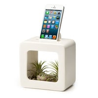 BLOOM BOX | Docking Station Flower Pot | UncommonGoods