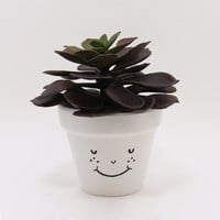 Terracotta Pot, Succulent Planter, Cute Face Planter, Small Pot, White Planter, Air Plant Holder, Indoor Planter, Succulent Pot, Unique