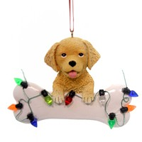 Holiday Ornaments DOG WITH BONE Polyresin Golden Retriever A1680 Gold Retriever