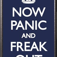 Now Panic And Freak Out 24x36 Dry Mount Poster Silver Wood Framed
