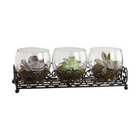 Canter Centerpiece Rustic,Clear