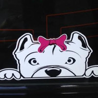 Tierney B (Pitbull) Window Decal
