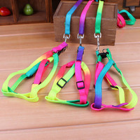 Pet Small Dog Puppy Cat Rabbit Kitten Nylon Harness Collar Leash Lead Adjustable 1 PCS