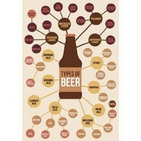 Types of Beer Poster 13 x 19in