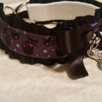 Black Ruffled, with Cats and Cauldrons, Halloween, Kitten Collar.