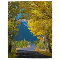 USA, Colorado. Road Flanked By Aspens Puzzle