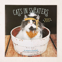 2017 Cats In Sweaters Wall Calendar - Urban Outfitters