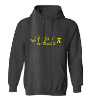 I hate Some Pi And It Was Delicious Hoodie for Mens Hoodie and Womens Hoodie *