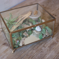 Antique Brass Glass Box with Feet