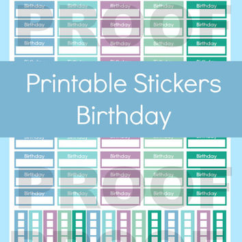Erin Condren Planner Stickers, Birthday Planner Stickers, Erin Condren Birthday Stickers, Erin Condren Stickers, Stickers for Erin Condren